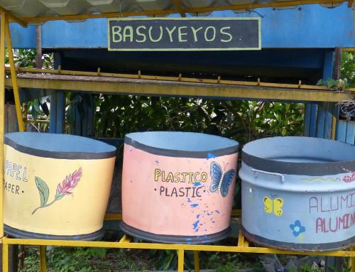 Richtig trennen, aber wie? Vier Fakten über Mülltrennung