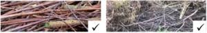 Das Bild zeigt Hölzer, die beim Baum- und Strauchschnitt abgegebene werden dürfen.