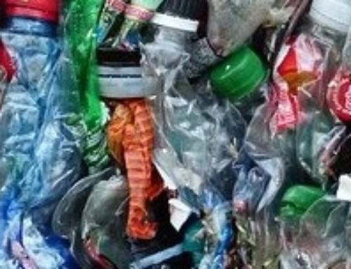 Wegwerfplastik – Verbote und Kennzeichnungspflicht ab Juli 2021
