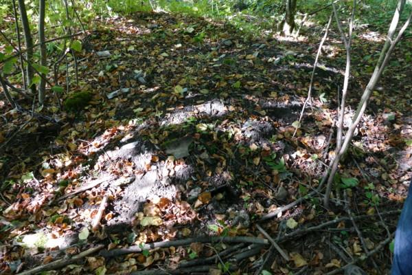 Das Bild zeigt den Erdhaufen, in dem Asbestplatten versteckt sind.