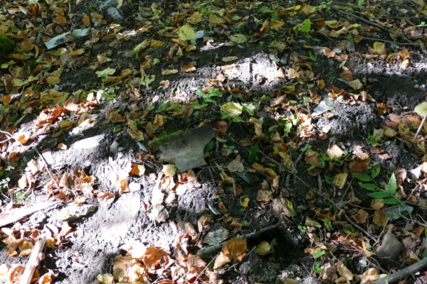 Asbestplatte liegt auf Erdhügel im Gebüsch